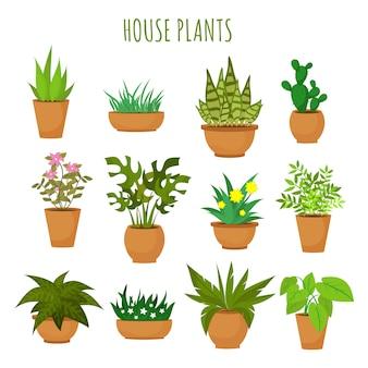 屋内家の緑の植物と白いベクトルセットに分離された花