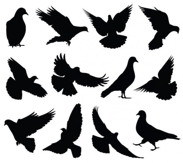 Силуэты летающих голубей изолированы. голуби установить символы любви и мира.
