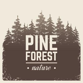 霧の霧でビンテージ自然松とモミの木の森をスケッチします。