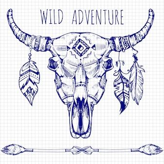 手描きの羽と矢で水牛の頭蓋骨