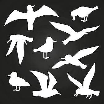 黒板に白い鳥の影絵-飛んでいるカモメのシルエット