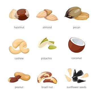 Мультфильм орехи