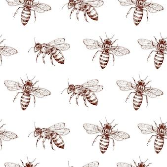 Медоносная пчела бесшовные модели. урожай каракули эскиз упаковки