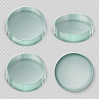 空のガラスペトリ皿。生物学実験室皿ベクトルイラスト透明に分離