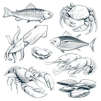 Эскиз морепродуктов. омары моллюски рыба креветки. ручной обращается морепродукты еды винтаж векторный набор изолированных