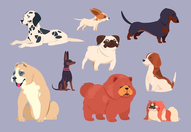 Мультяшные собаки. щенок питомец разных пород. векторная коллекция чау-чау, таксы и далматина, питбуля и пекинеса, мопса и бигля