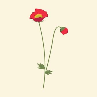 赤い野生の花のベクトル図