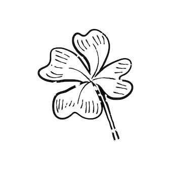 Иллюстрация растения