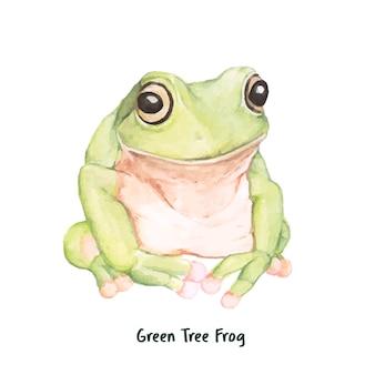 手を引く緑の木のカエル