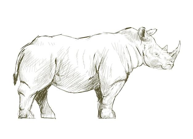 Стиль рисунка рисунка носорога