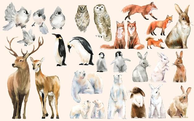 手描きの野生動物の水彩様式のセット