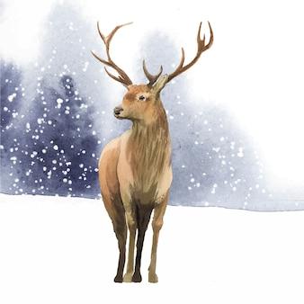 Мужской олень, нарисованный акварельным вектором