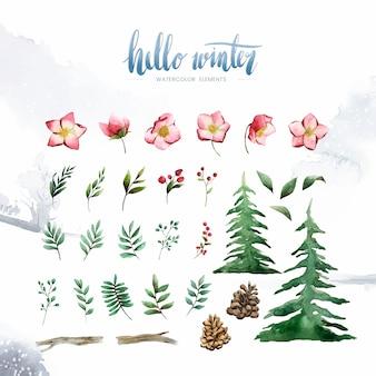 こんにちは冬の植物と花は、水彩ベクトルで描いた