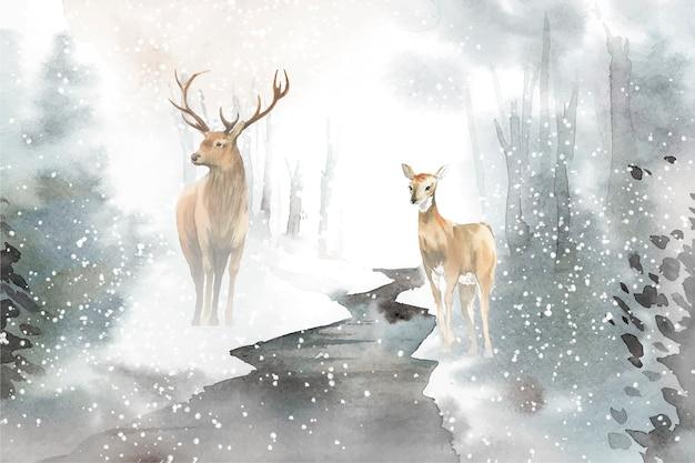 鹿の水彩スタイルベクトルの手描きのペア