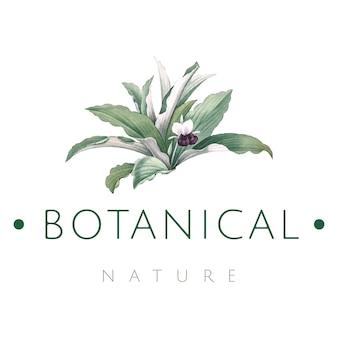 植物性ロゴデザインベクター
