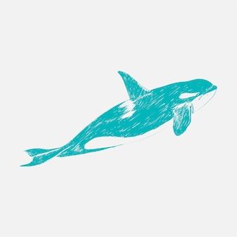 キラークジラのイラストの描画スタイル