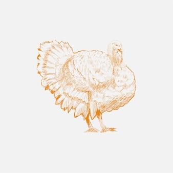 七面鳥のイラストの描画スタイル