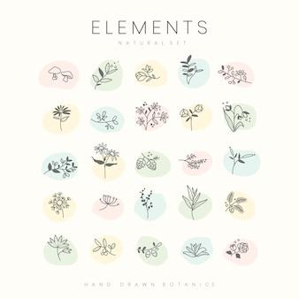 手で描かれた植物の要素ベクトルのセット