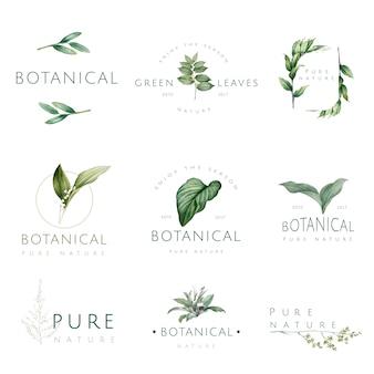 Набор векторов природы и растений
