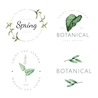 自然と植物のロゴベクトルのセット