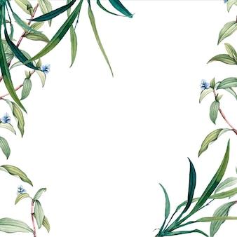 Зеленый ботанический фон с листьями