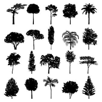 Коллекция силуэтов деревьев