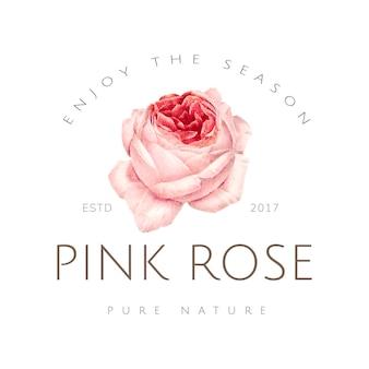 手描きのピンクのバラのエンブレム
