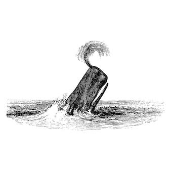 精霊のクジラのヴィンテージイラスト