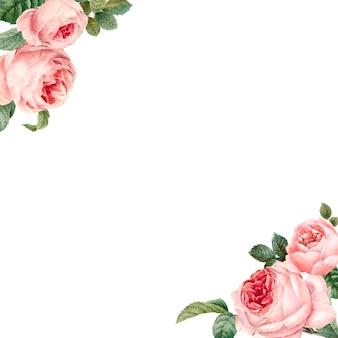 白い背景のベクトルに手描きのピンクのバラのフレーム