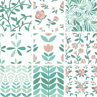 Набор рисованной иллюстрации роз и растений