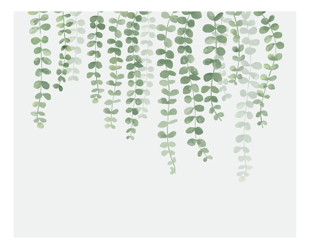 白い背景に隔離された植物のイラスト