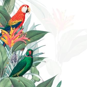 コンゴウインコ熱帯モックアップイラストレーション