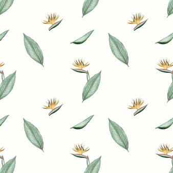 楽園の鳥の花のイラスト