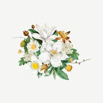 山ツバキの花