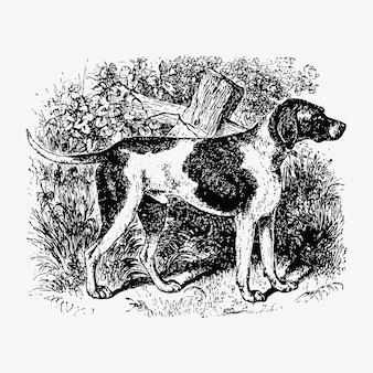 飼いならされた狩猟犬
