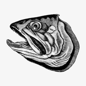 魚の頭を切る