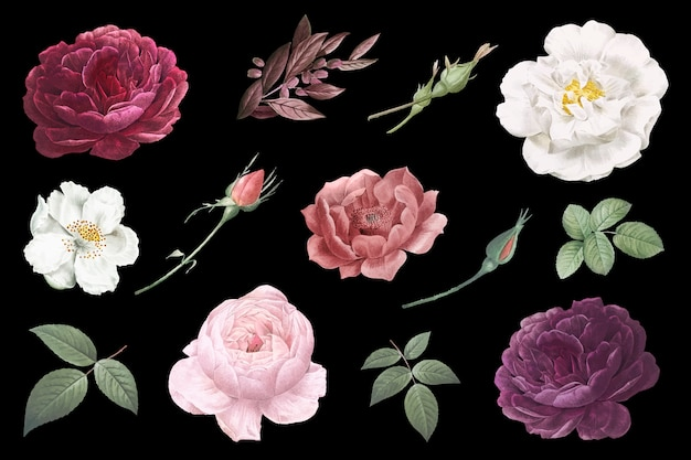 ヴィンテージの花の絵
