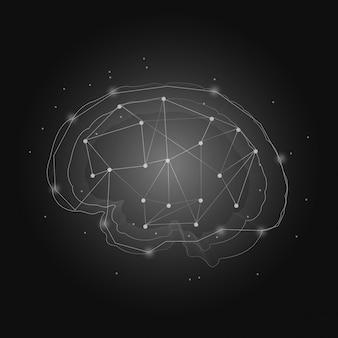 人間の神経系