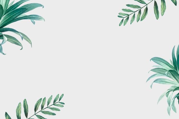 ヤシの木の背景