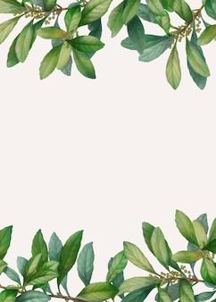 Зеленая листва в рамке баннер