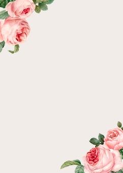 エレガントなバラ色のデザインスペース