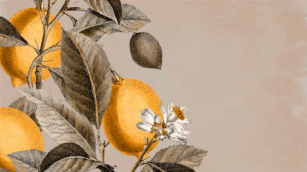 空白のレモンの木の背景