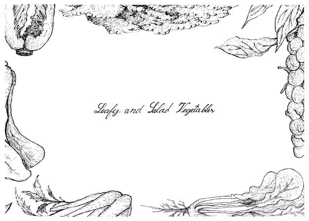 葉とサラダの野菜の手描き