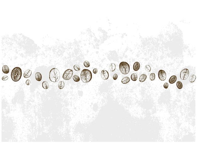 別のコーヒー豆の手描きの行