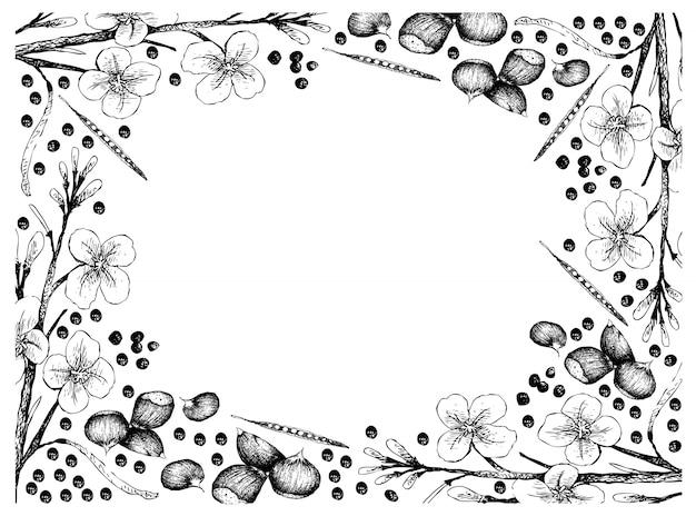 Ручной обращается кадр из японских каштанов и семян канолы