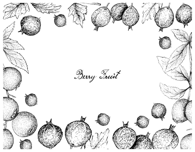 ブラックベルベットグースベリーとビルベリーの手描きのフレーム