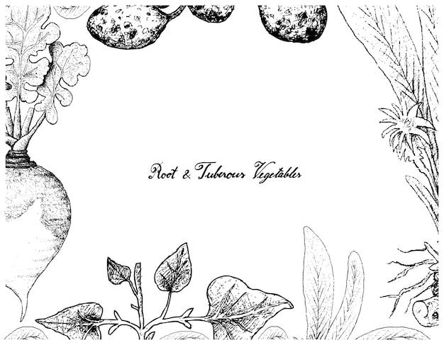 根と塊茎の野菜の手描きのフレーム