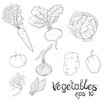 Набор рисованных овощей. сбор эскиза пищи.