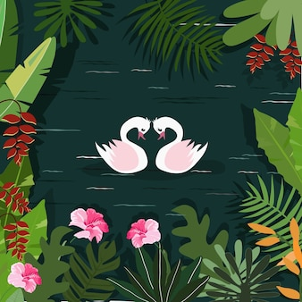 カップルは熱帯林の川で白鳥します。