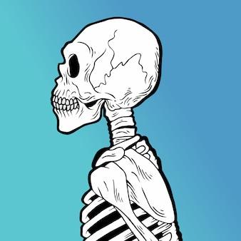 Белый череп рисованной стиль вектор каракули дизайн иллюстрации.